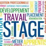 recrutement de stagiaires à Dakar/Stage Subventionné/Stagiaires Agents Back-office/stages de l'OCDE/Recrutement de stagiaires