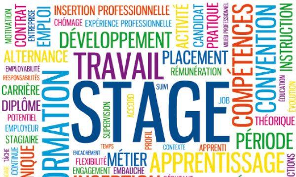 stages de l'OCDE/Recrutement de stagiaires