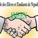 Journal Amicale des élèves et étudiants de Nguidjilone