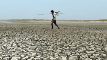 Rapport sur le climat/COP24-Afrique/Isra/pays industrialisés/lutte contre le réchauffement climatique
