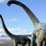 Un nouveau dinosaure géant découvert en Afrique