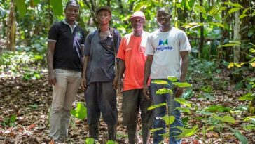 Applications agricoles/emploi des jeunes en Afrique