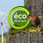 Recrutement de plusieurs profils par Eco Afrique