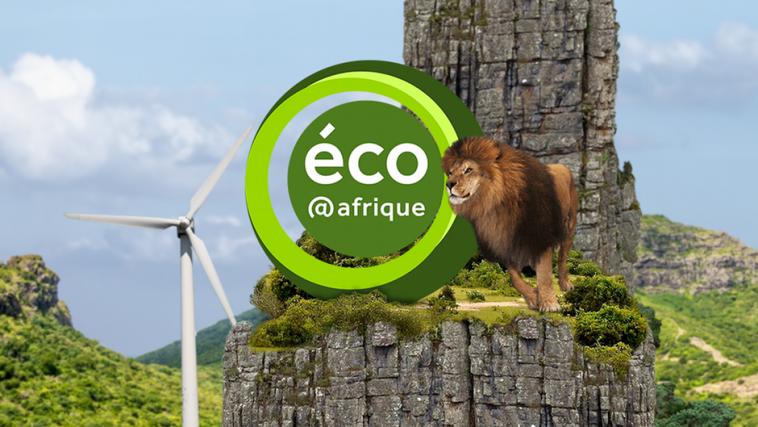 recrutement de plusieurs profils par eco afrique s u00e9n u00e9gal