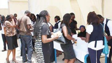programme TEKKI FII /demandeurs d'emploi/Développer l'emploi au Sénégal