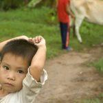 enfants vivant près d'une forêt