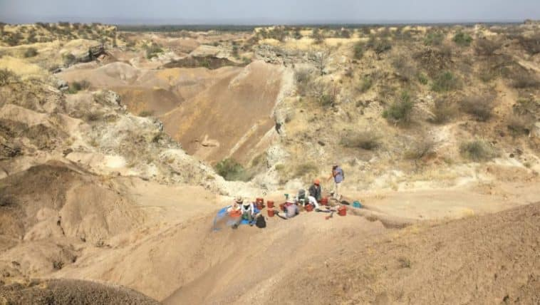 vallée de l'Omo