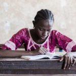 Thèses et Phd sur l'enseignement primaire et secondaire :