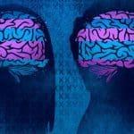 cerveau des femmes