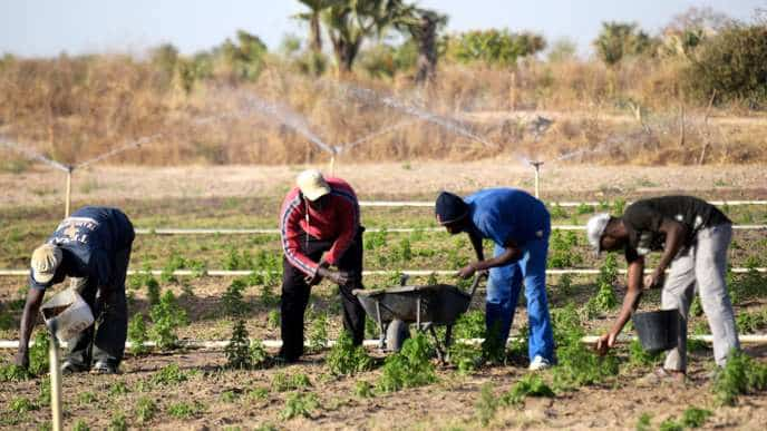 Commerciaux (secteur agricole)/Concours CNFT 2019/agriculture numérique