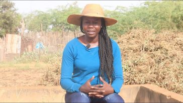 Entrepreneuriat agricole