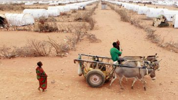 sécheresse dans la Corne de l'Afrique