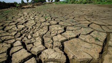 terres agricoles dégradées