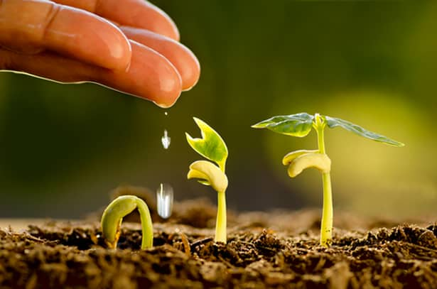 Journées de l'agroécologie