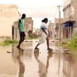 sécurité alimentaire des Africains